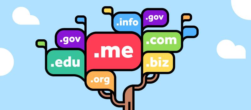 Поиск и выбор освободившегося домена